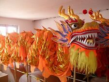 10m for 8 student size 5 Chinese Spring  DRAGON DANCE dragon Costume no poles