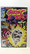 Marvel Comics Vol 2 Ghost Rider 33 Bagged and Boarded 1990 to 1998 series