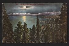 c1910 The Olympic Mountains by Moonlight Washington landscape postc