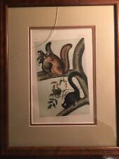 Original Octavo Squirrel Quadruped No 14 Plate LXVII JJ Audubon