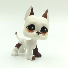 Littlest Pet Shop GREAT DANE Dog  Brown & Blue Eye LPS RARE #168