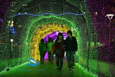 65 Foot GREEN STILL CLEAR LED DECORATION RICE LIGHT FOR DIWALI,CHRISTMAS(20M)