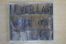 Everlast  – What It's Like  (C362)