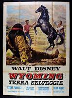 Werbeplakat Wyoming Terra Wild Walt Disney Steve Forrest Jack Elam M272