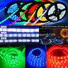 5M 300 SMD 3528/5050/5630 LED Strip Light RGB/Bianca/Fredda/  Striscia Luce