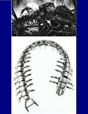 Men's Titanium Centipede Bracelet.Tokyo Ghoul.Kaneki Ken.Anime.Cool