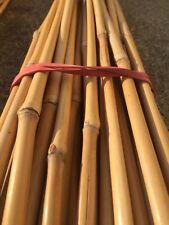 Bambusrohre 152 cm lang// 15-17 mm dick 50 Stück Bambusstäbe