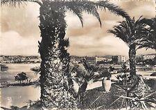 BR47084 Cannes vue prise des nouveaux jardins de la croisette       France