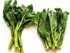 """BROCCOLI SEEDS """"CHINESE"""" (APPROX 200 SEEDS )"""