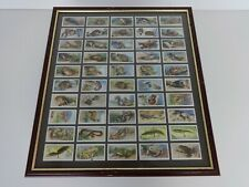 More details for players cigarettes cards animals of the countryside vintage framed x50 complete