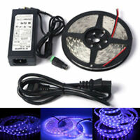 5M 395nm UV Ultraviolet LED Strip Light Blacklight Party Stage Dj Lamp DC power