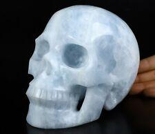 "Huge 6.4"" BLUE CALCITE Carved Crystal Skull, Realistic, Crystal Healing"