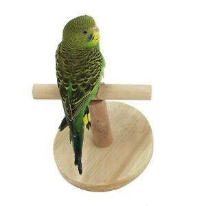 Pet Bird Parrot Hanging Perch Stand Budgie Cage Paw Grinding Clean Chew Toy Gift