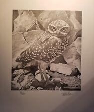 Burrowing Owl by Nick Wilson
