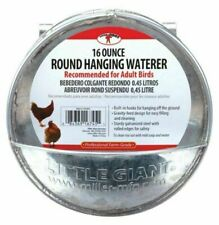 Little Giant 167451 Round Galvanized Hanging Waterer