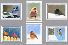 6 Christmas Cards Assorted Wild Winter Birds Note Greeting Blue Jay Cardinal