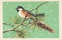 National Wildlife Federation Songbird CHICKADEE Postcard - UNUSED