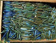 "25ct BLUE GREEN MIX 3.5"" SASSY SWIMBAIT MINNOWS,Bass,Walleye,Saltwater,Shads"