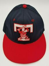 Vintage Toledo Mud Hens Pro-Line Fitted Hat Deadstock Rare 6 5/8 90's Defunct