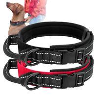 Heavy Duty Nylon Dog Collar with Control Handle Training Pitbull Rottweiler