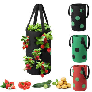 Hanging Fabric Plant Grow Pots Bag Tomato Strawberry Flower Herb Planter Bags