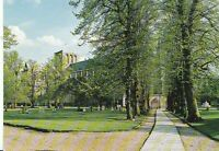 Hampshire Postcard - Winchester Cathedral - Lime Walk  AB587