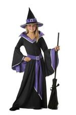 California Halloween Girls' Costumes Incantasia, The Glamour Witch size XL 12-14