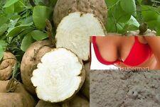"3 oz 100% Natural herb Pueraria Mirifica Powder ""White Kwao Krua"" (not extract)."