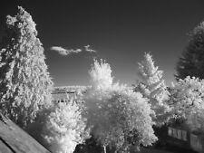 Full Spectrum converti appareil photo Fujifilm S2980 UV Vis infrarouge Ghost Paranormal
