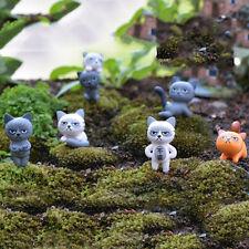 Angry Cat Figures Decor Miniature Figurine Mini Fairy Garden Resin Craft  SN