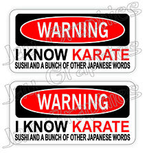 (Pair) Warning - I KNOW KARATE Funny Hard Hat Stickers / Construction Decals USA