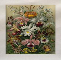 Iris Flowers  Printed Fabric Panel Make A Cushion Upholstery Craft