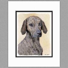 Plott Hound Dog Original Art Print 8x10 Matted to 11x14
