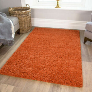 Modern Soft Shaggy Rugs Carpet Thick Cosy Terracotta Rust Living Room Bedroom