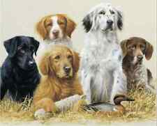 """Counted Cross Stitch Kit """"Sporting Dogs"""" by Andrea's Designs"""