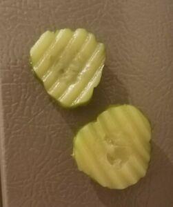 Pickle Chip Magnets - Fake Food Magnets