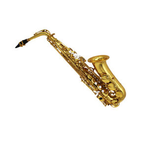 Eastern music alto saxophone double arm low Bb, B and C with adjustable palm key