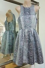 Sportsgirl brocade fit + flare dress.Sz8.Silver shimmer snakeskin.VGC