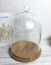 """Large Glass Cloche Top Display Dome with Bamboo Wooden Base 8.5x6"""" Diameter"""