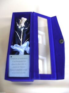 """ANNIVERSARY/BIRTHDAY/CHRISTMAS GIFT Silver Dipped 6"""" Rose in Blue Satin & Box"""