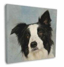 "Border Collie Dog 12""x12"" Wall Art Canvas Decor, Picture Print, AD-BC13-C12"