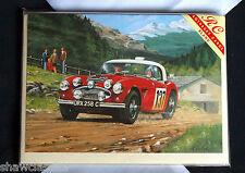 Alpine Rally - Austin Healey at speed 1960's - Greetings card - Blank inside