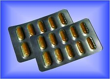20 POTENZPILLEN HERBAL Perfect Performer Erection - POTENZMITTEL starke Erektion