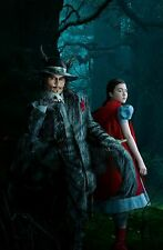 """Into the Woods Movie Poster 18"""" x 28"""" ID:2"""