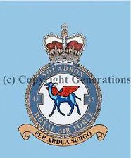 ROYAL AIR FORCE 45 SQUADRON  COASTER
