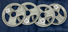 """NEW Weider 40Lb Pound OLYMPIC CAST IRON 2"""" Hole 4 - 10 Lb Weight Plates"""