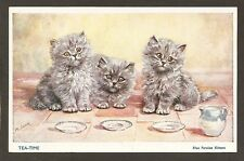 POSTCARD:  TEA TIME - BLUE PERSIAN KITTENS - CATS WAITING FOR MILK by MABEL GEAR