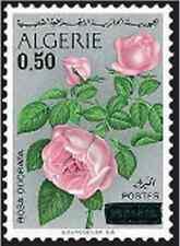 Timbre Flore Roses Algérie 598 * lot 6940