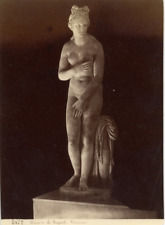 Italie, Museo di Napoli, Venere Vintage Albumen Print, Italie Tirage albuminé