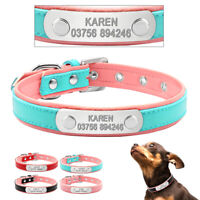 Personalised Dog Collar Soft Padded Name Engraved ID Collars for Pet Puppy Cat